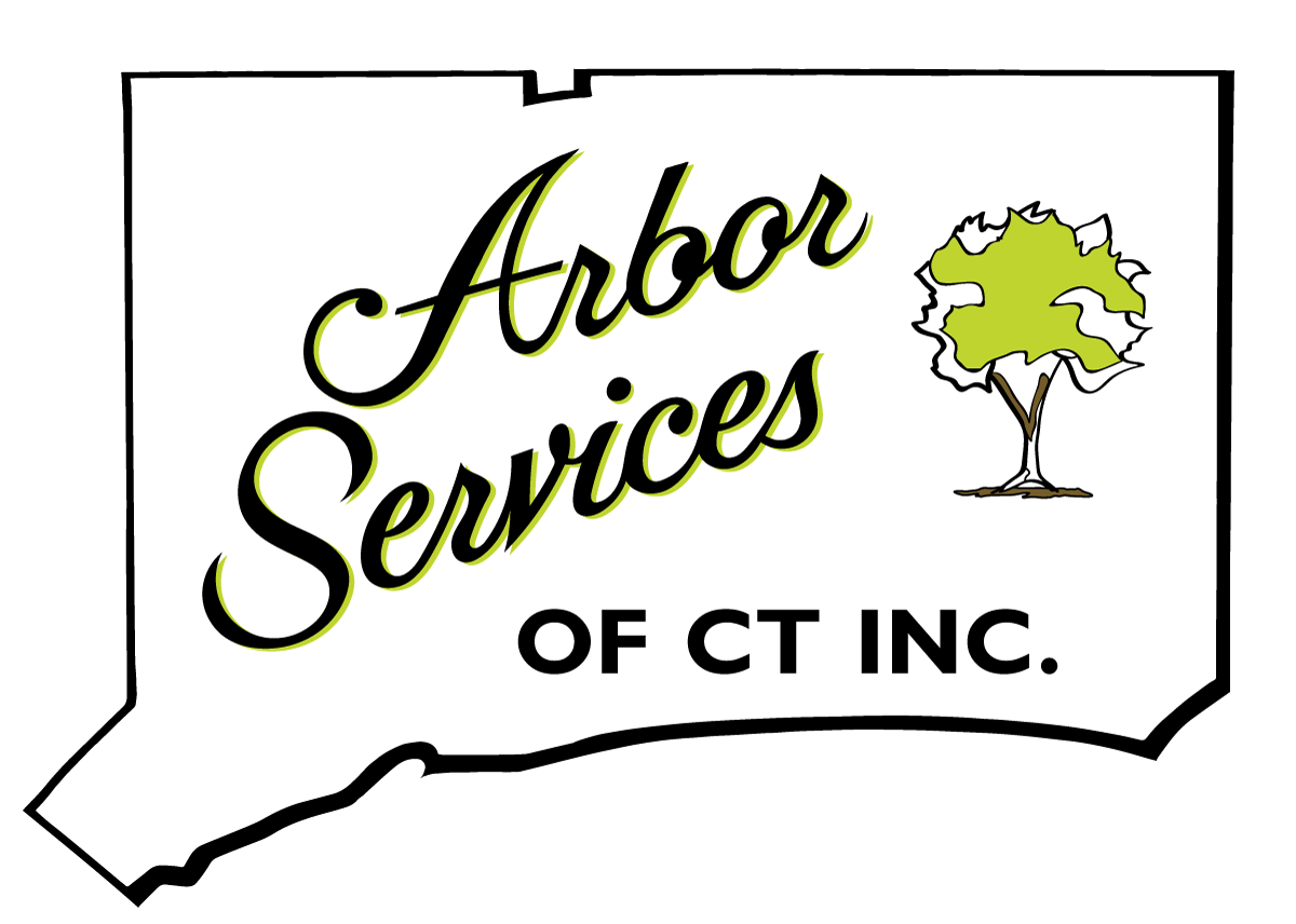 Arbor Services Of Connecticut